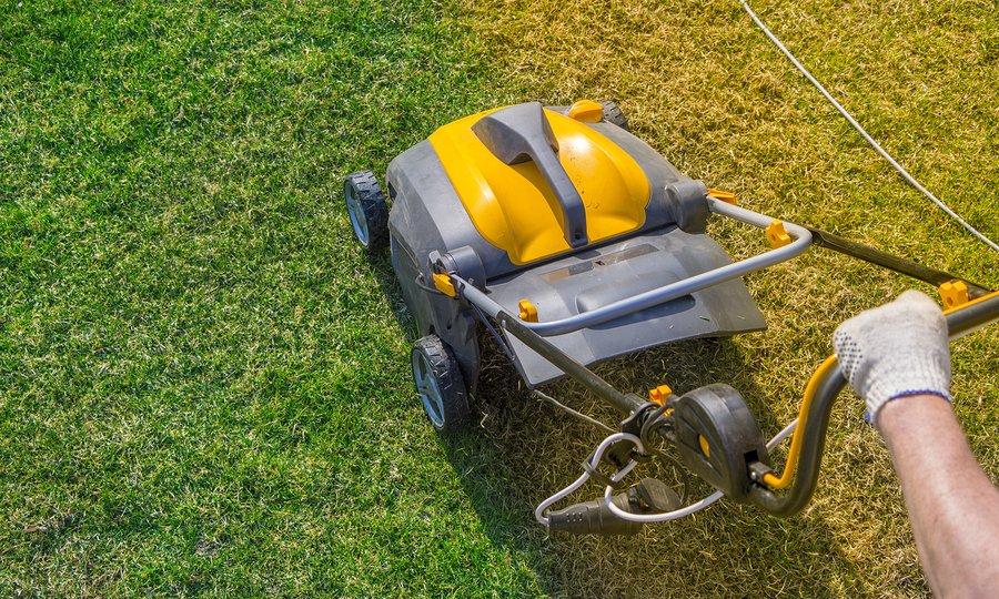 worker pushing a grass mower