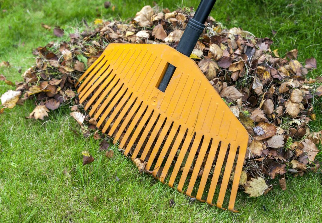landscape worker doing spring fall clean up
